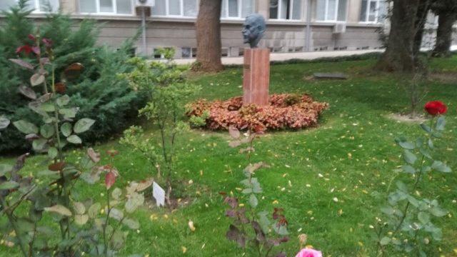 MU Varna Medizinische Fakultät Campus 10