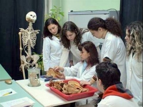 Anatomieübung an der MU Varna